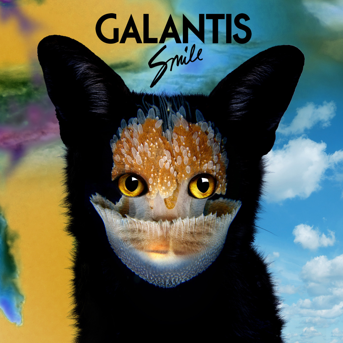 "Music / Galantis<span class=""slide_numbers""><span class=""slide_number"">10</span>/12</span>"