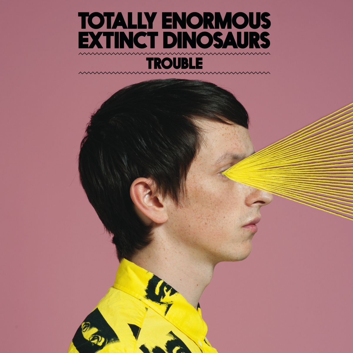 "Music / Totally Enormous Extinct Dinosaurs<span class=""slide_numbers""><span class=""slide_number"">2</span>/5</span>"