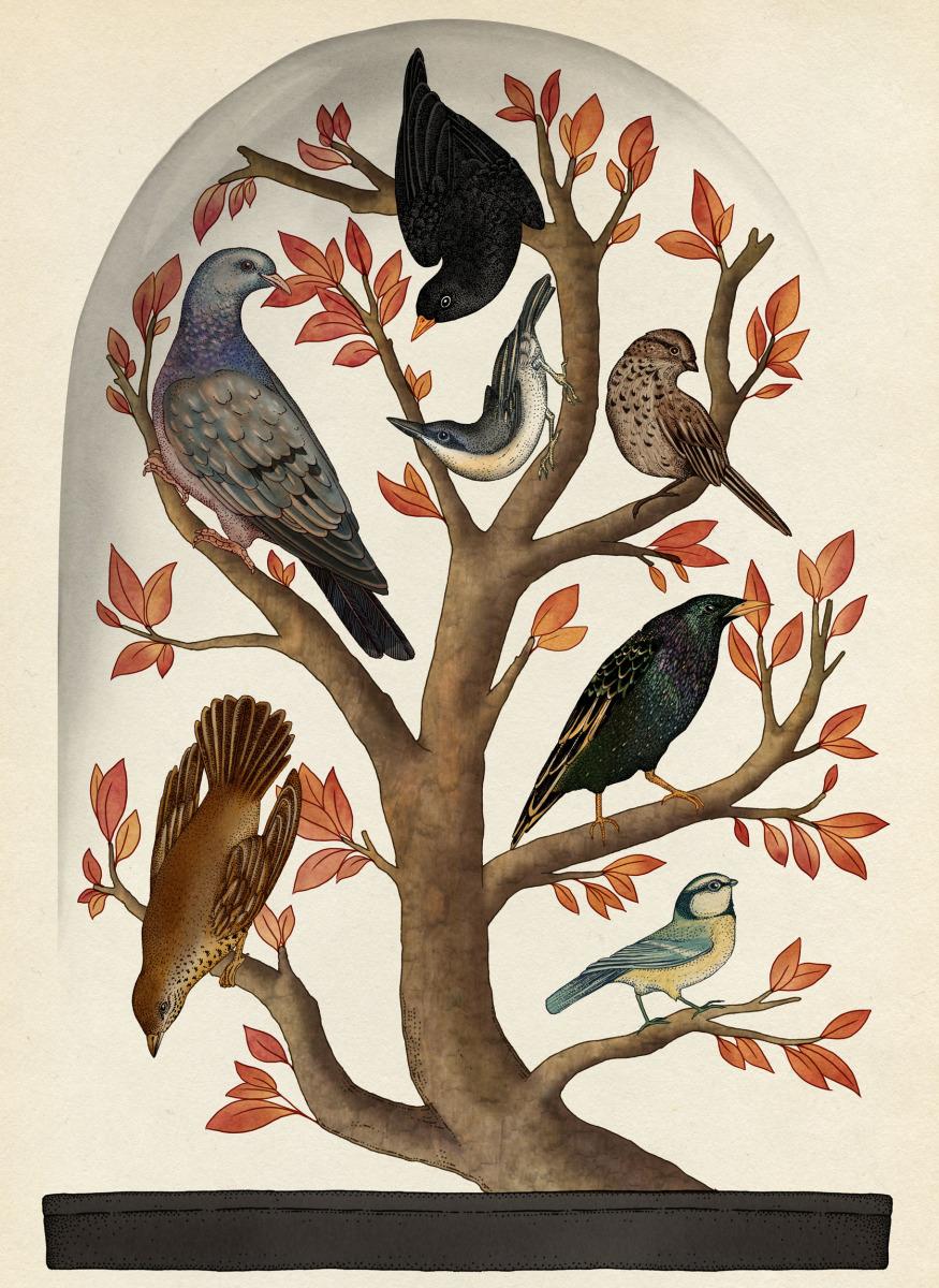 """Katie Scott / Books / Animalium<span class=""""slide_numbers""""><span class=""""slide_number"""">15</span>/34</span>"""