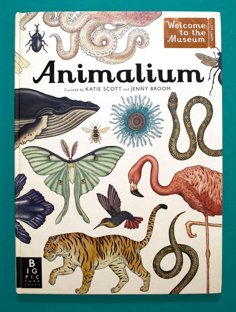 """Katie Scott / Books / Animalium<span class=""""slide_numbers""""><span class=""""slide_number"""">1</span>/34</span>"""