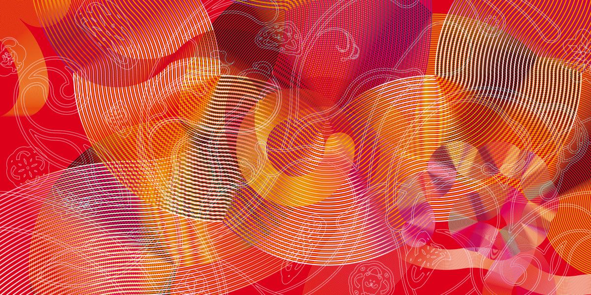 "Kam Tang / Exhibition / Maxalot<span class=""slide_numbers""><span class=""slide_number"">1</span>/1</span>"