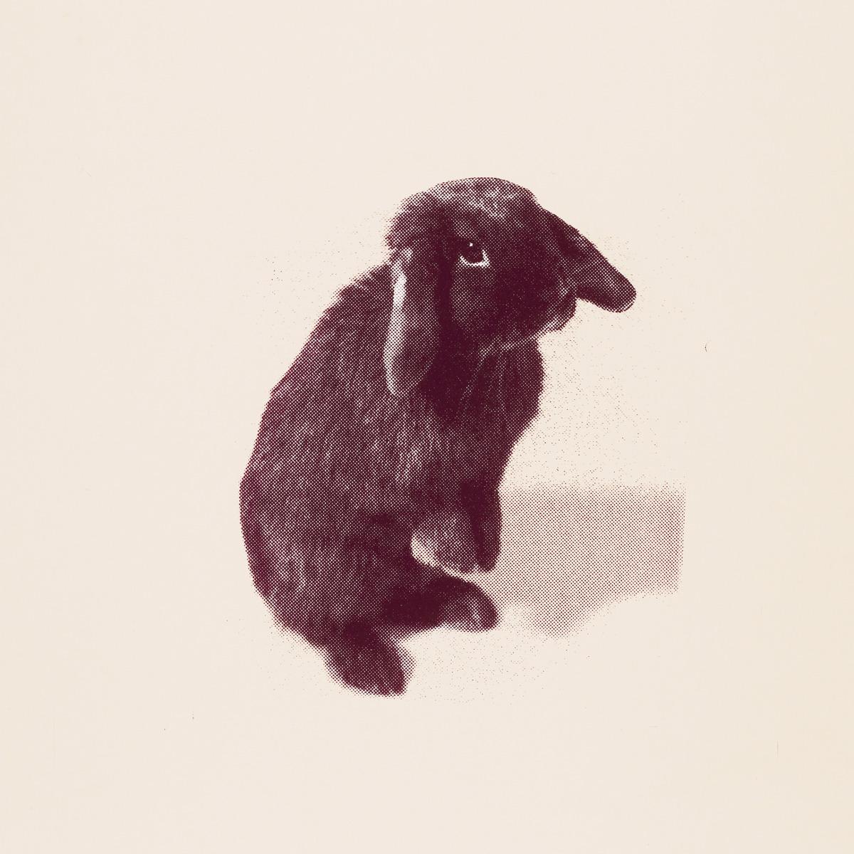 "Kate Gibb / Music / Kate Nash - My Best Friend Is You<span class=""slide_numbers""><span class=""slide_number"">9</span>/10</span>"