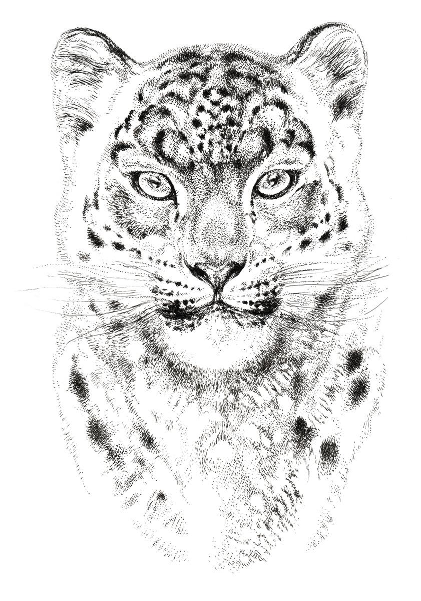 "Vania Zouravliov / Commercial Work / Snow Leopard Vodka<span class=""slide_numbers""><span class=""slide_number"">1</span>/3</span>"