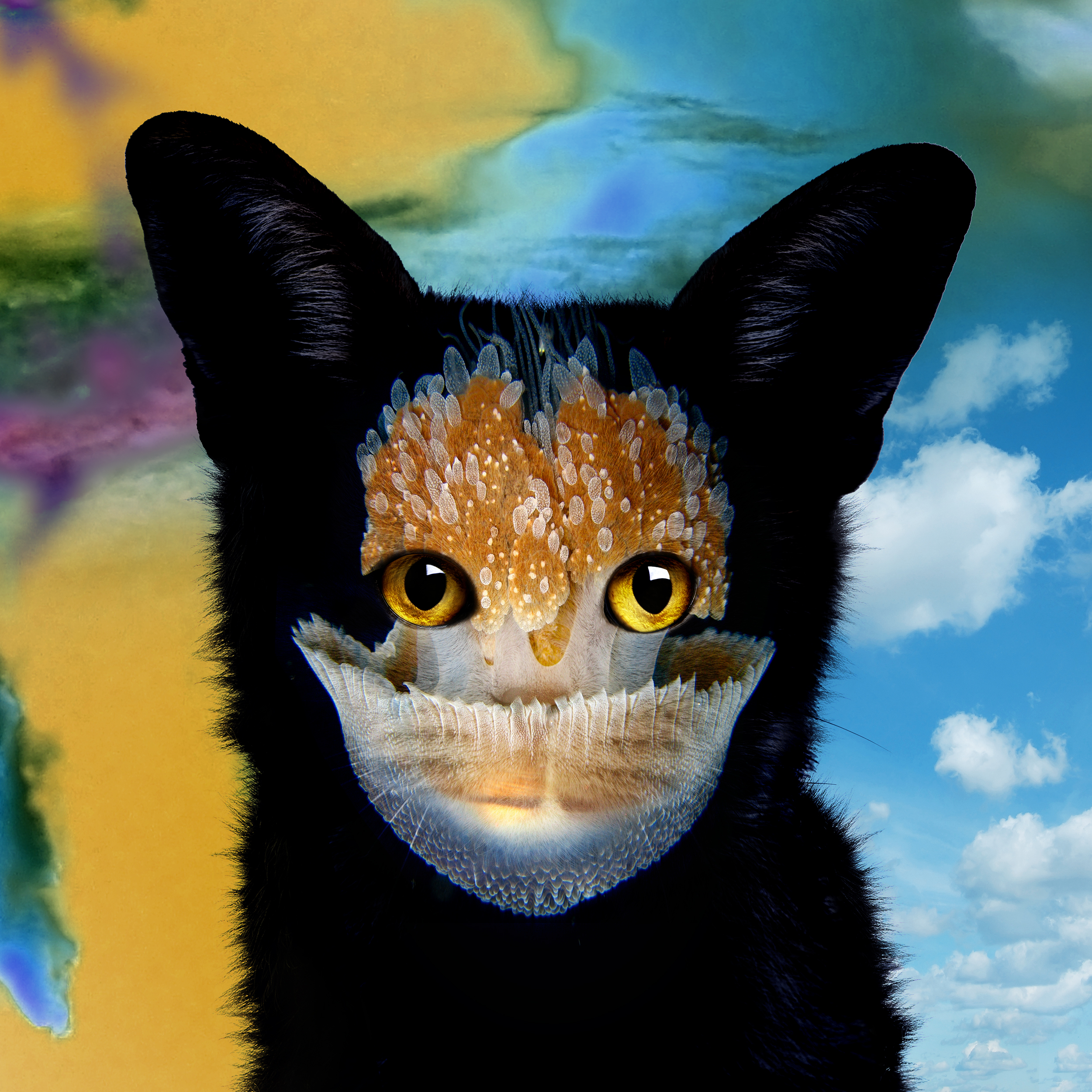 Image result for galantis