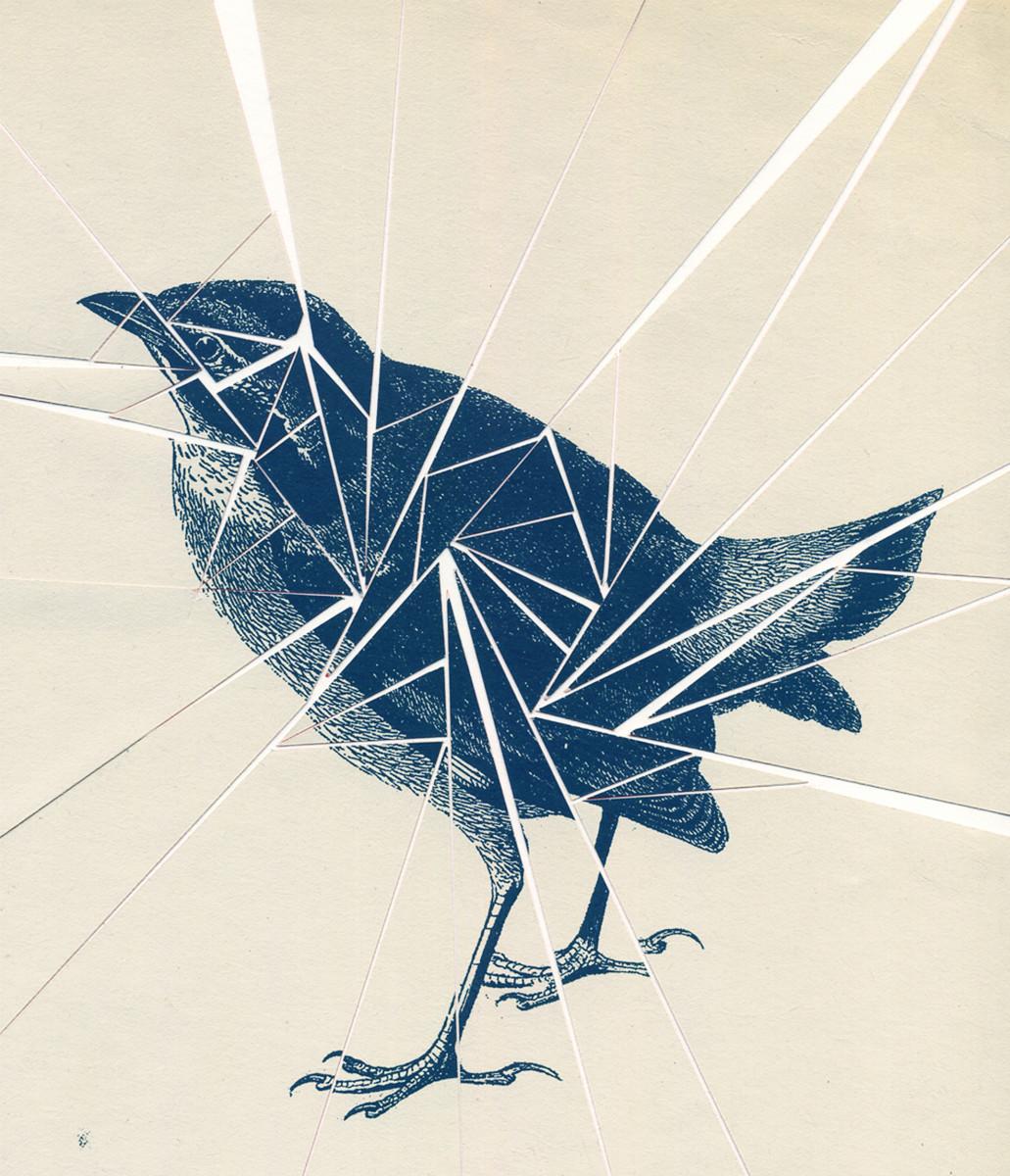 "Kate Gibb / Personal Work / Birds<span class=""slide_numbers""><span class=""slide_number"">4</span>/4</span>"