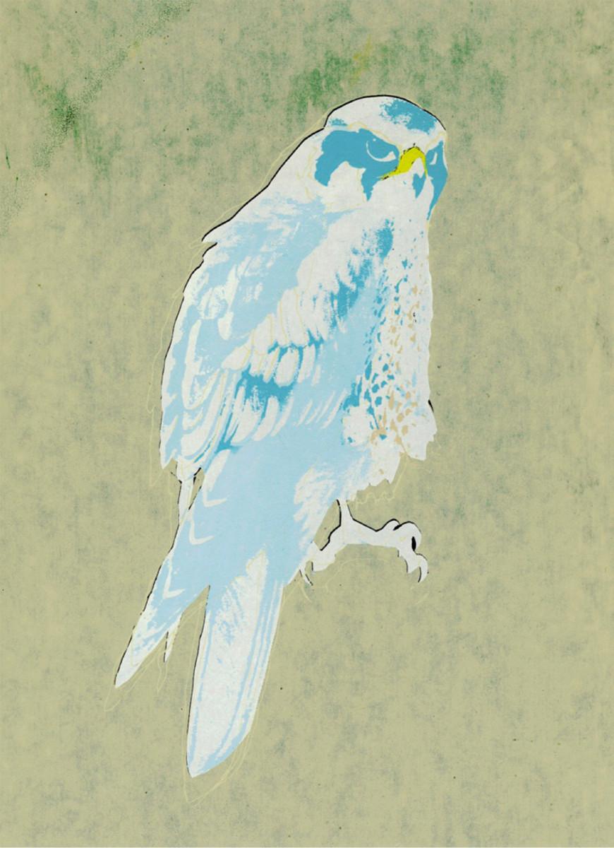 "Kate Gibb / Personal Work / Birds<span class=""slide_numbers""><span class=""slide_number"">2</span>/4</span>"