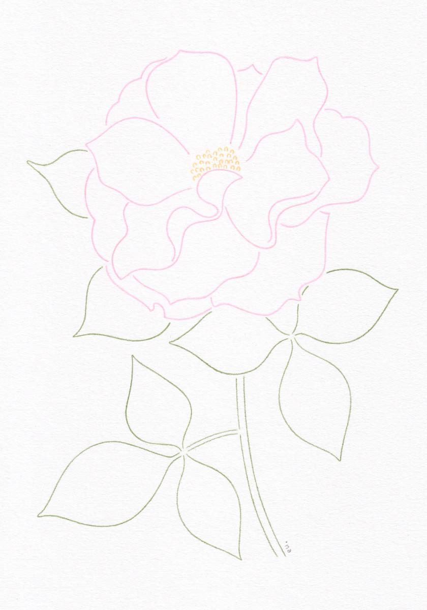 "Emi Ueoka / Personal Work / Botanical<span class=""slide_numbers""><span class=""slide_number"">2</span>/5</span>"