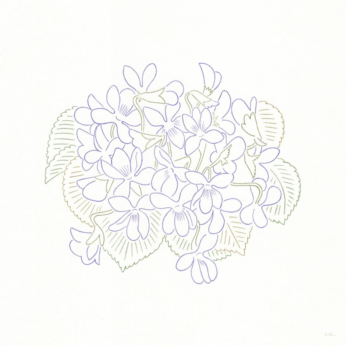 "Emi Ueoka / Personal Work / Botanical<span class=""slide_numbers""><span class=""slide_number"">5</span>/5</span>"